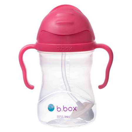 sippy cup raspberry